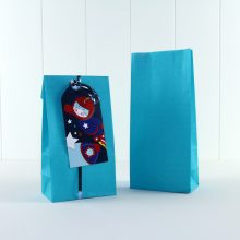 Paper Party Bag ~ Turquoise