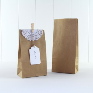 Paper Party Bag ~ Kraft