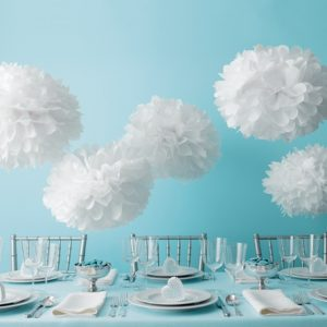 Tissue Paper Pom Pom Kit ~ White