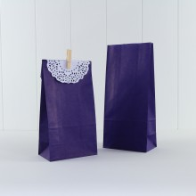 Paper Party Bag ~ Purple