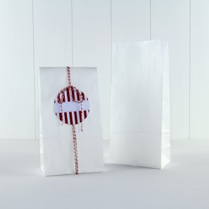 Paper Party Bag ~ White