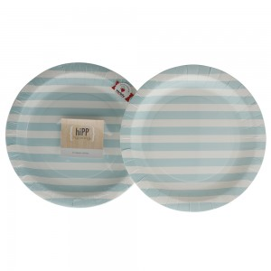 Paper Plates ~ Duck Egg Blue Stripe