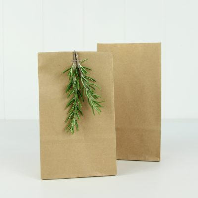 Paper Party Bag Small ~ Kraft