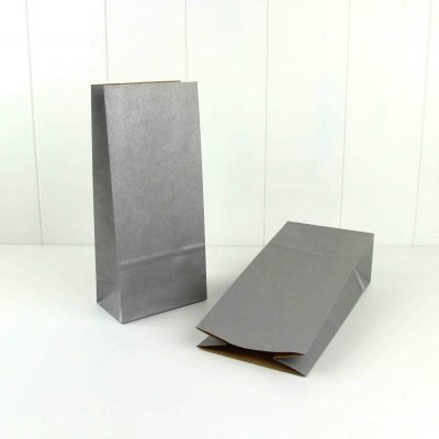 Paper Party Bag ~ Silver