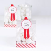 Candy Cane treat bags by Paper Eskimo are perfect for Xmas gifts.