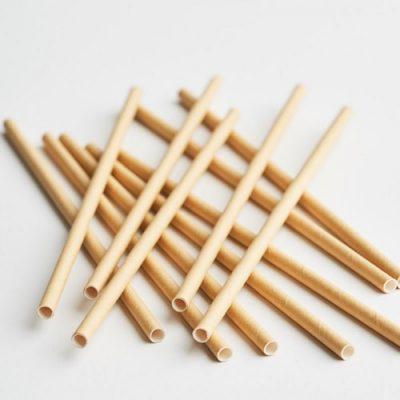 Bulk Kraft Paper Straws NZ
